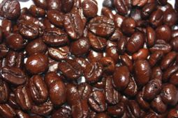 The super shiney Deathwish Coffee beans